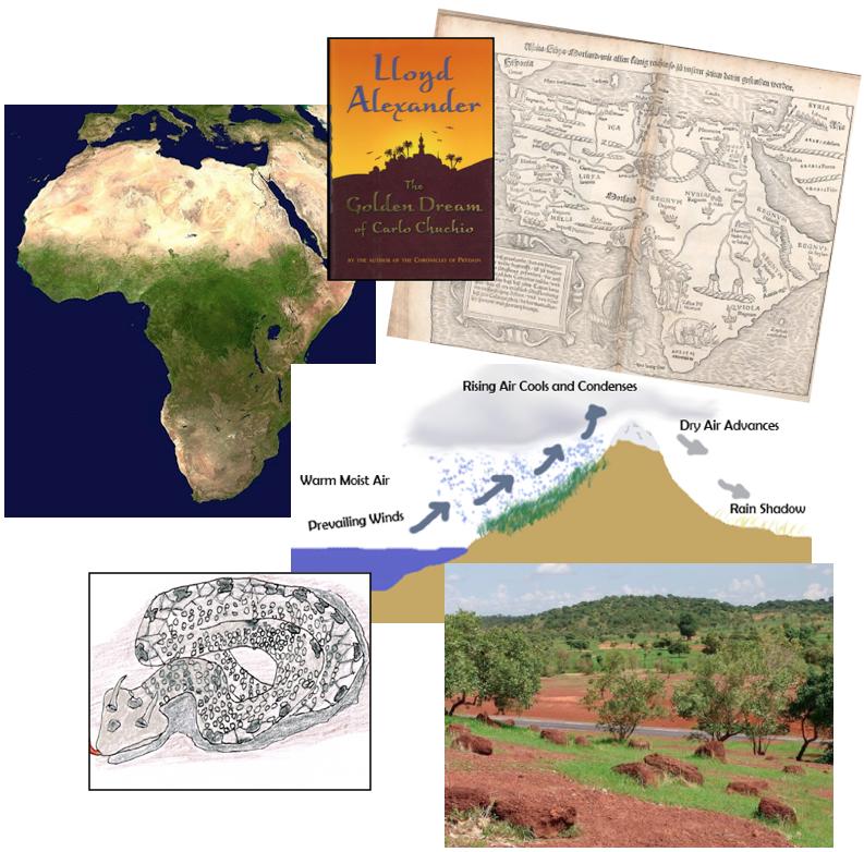 Sahara blog collage